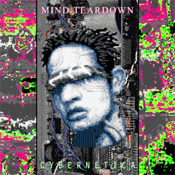 mind-teardown