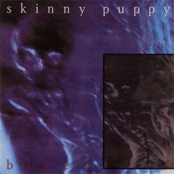skinny-puppy